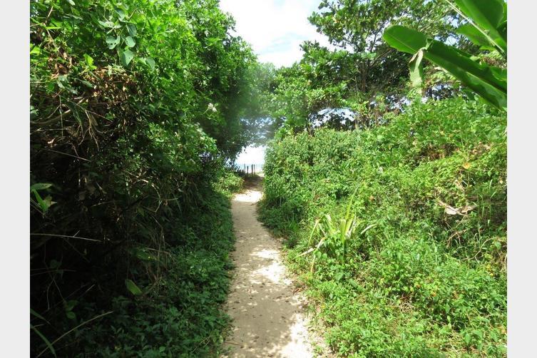 Caminho para a praia